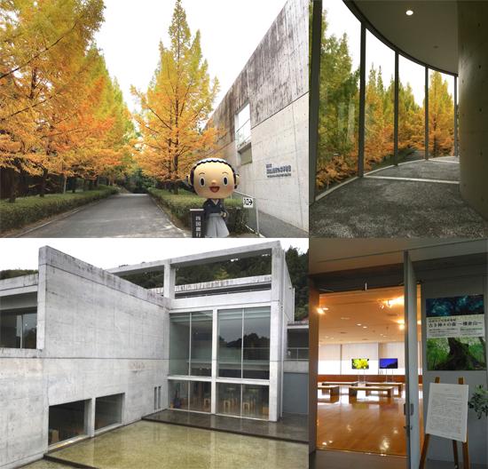 紅葉と芸術に秋に横倉山自然の博物館に行ってきたで